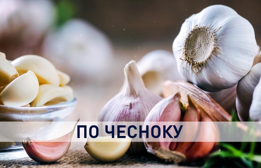 Почему белорусский чеснок нерентабельный и сможет ли он потеснить на прилавках импортный, рассказали аграрии