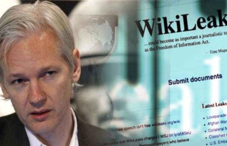 Wikileaks рассказала о судьбе кота Ассанжа