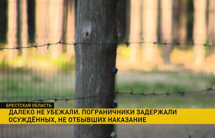 На украинской границе задержали двух участников «хороводного дела» из Бреста. Теперь им грозит тюрьма