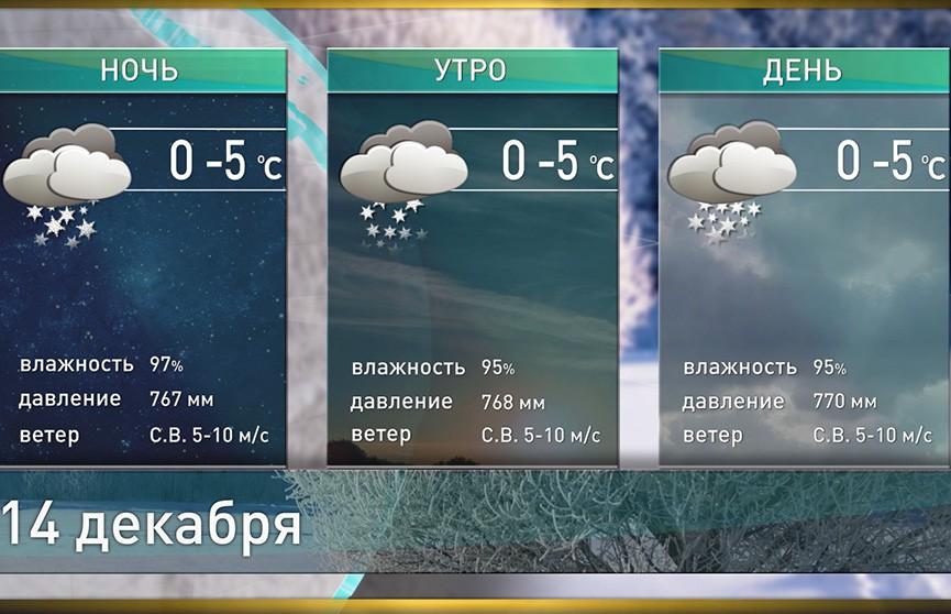 Прогноз погоды на 14 декабря: морозы возвращаются
