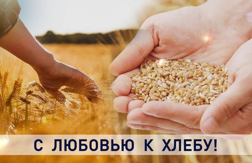 Очередные герои жатвы. Первая тысяча тонн зерна – от простого механизатора из Гродненского района