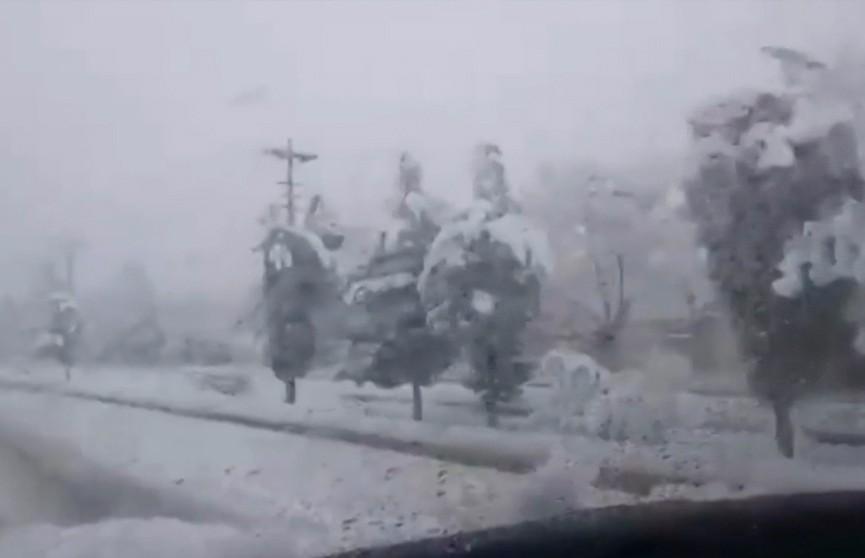 Пакистанец приютил более 100 человек – они застряли в дороге из-за снегопада