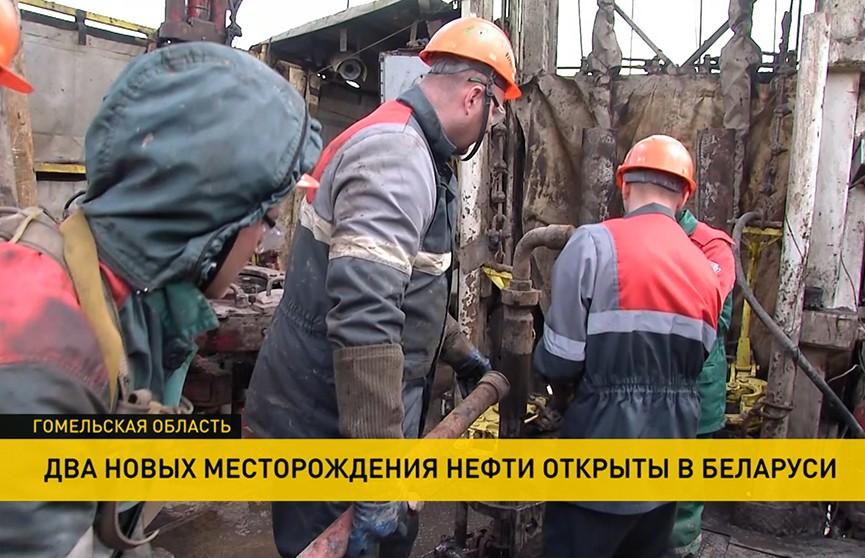 Два новых месторождения нефти в Беларуси: предварительно, запасы составляют более 2.5 млн тонн