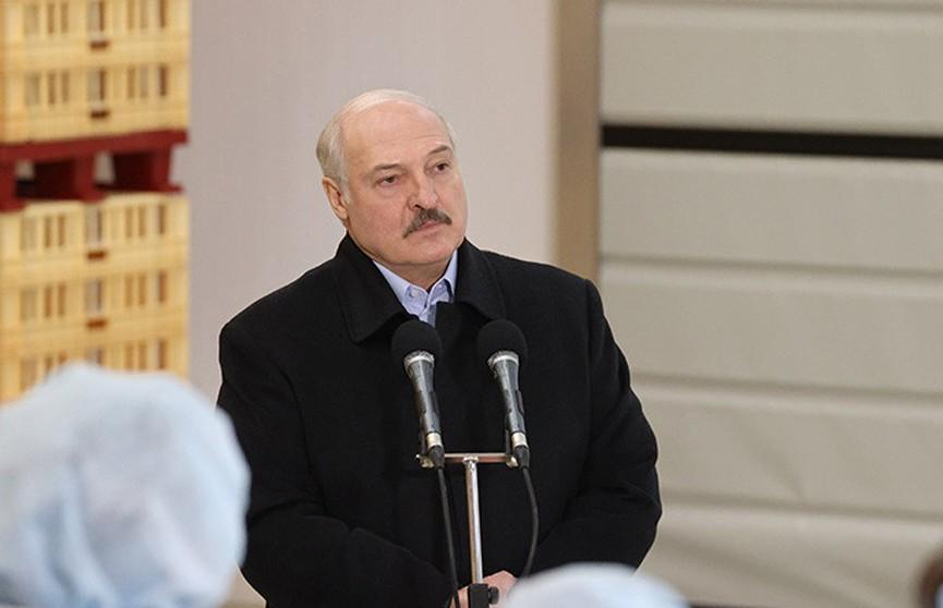 Лукашенко рассказал, кто может стать хорошим кандидатом в Президенты