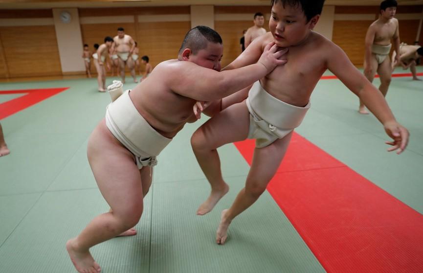 10-летний японец располнел до 85 кг и наберет еще 20 ради успеха в сумо