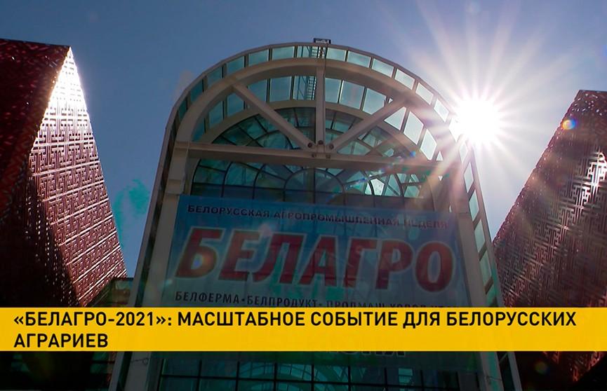 «Белагро-2021»: день второй – выставку посетили делегации из России и Азербайджана