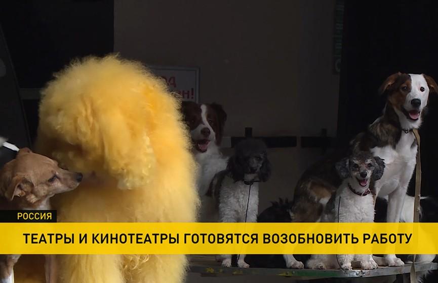 В России снимается запрет на работу театров, кинотеатров и концертных залов, но большинство артистов на сцену не выйдут