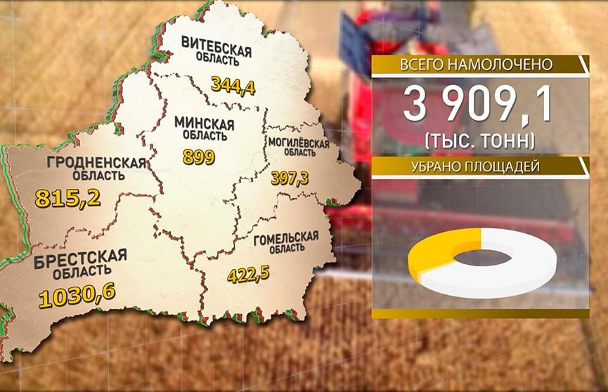 Брестские аграрии собрали 1 млн т зерна