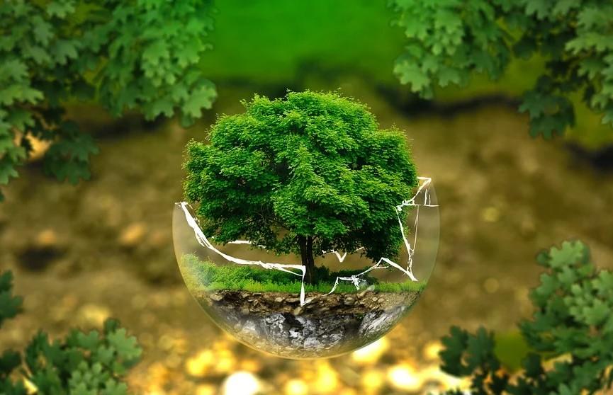 Сегодня Беларусь присоединится ко всемирной экологической акции «Час земли»