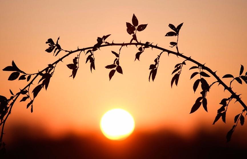 Как такое возможно? Пять солнц запечатлели в небе над Китаем (ВИДЕО)