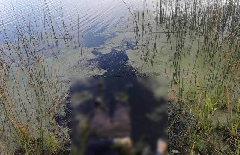 В Ветковском районе утонул рыбак