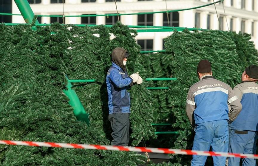 Главную ёлку страны устанавливают в Минске