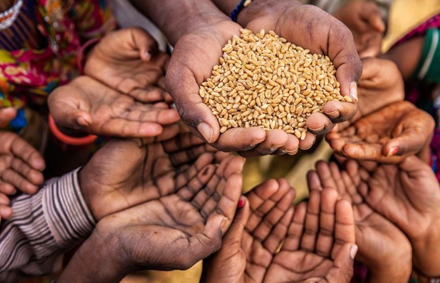 Число голодающих в мире может вырасти на 132 млн в 2020 году из-за пандемии COVID-19