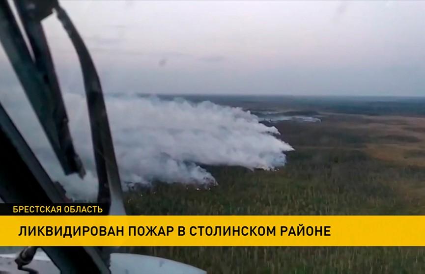 В Столинском районе вновь горели Ольманские болота
