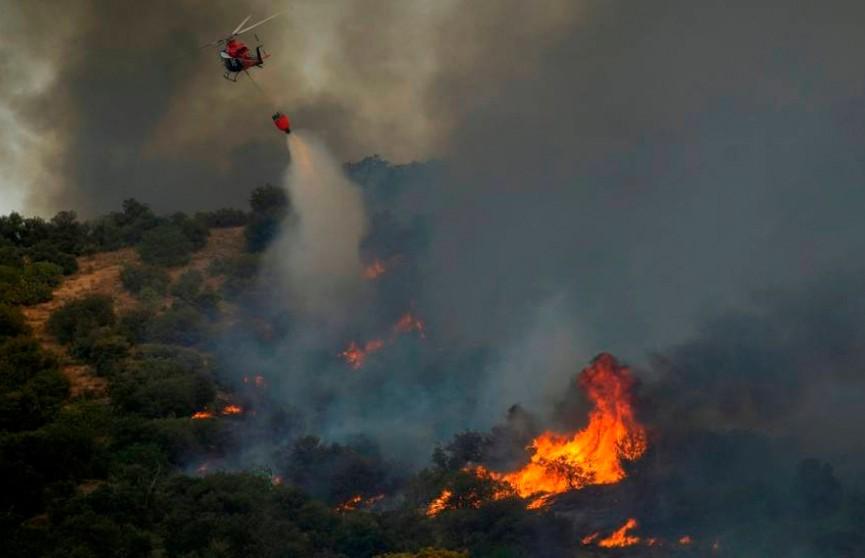 Лесные пожары бушуют под Мадридом. Пригороды испанской столицы эвакуируют