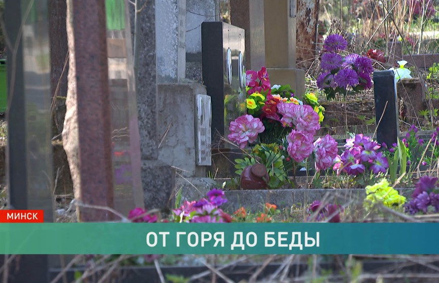 Искусственные цветы загрязняют Землю: на Радуницу ассортимент опасных «украшений» огромный