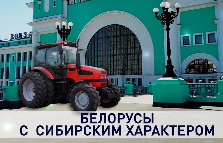 МТЗ в Сибири! Почему россияне выбирают белорусские тракторы, а не китайские?