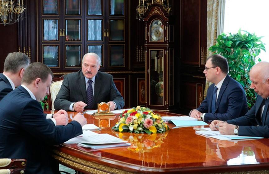 Президент выступил за стимулирование перехода белорусов на использование электроэнергии в своих домах