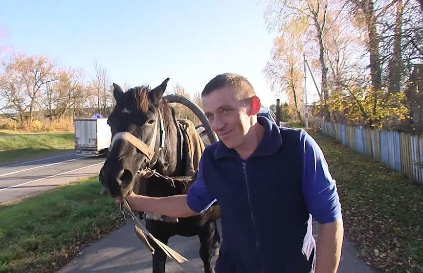 Белорус смастерил конемобиль (ВИДЕО)