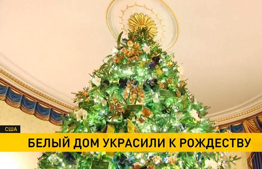 5-метровая ель и цветы ручной работы: Белый дом украсили к Рождеству