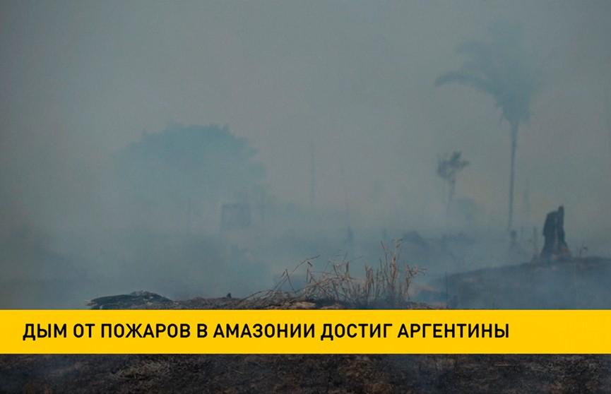 Дым от пожаров в лесах Амазонии достиг Аргентины