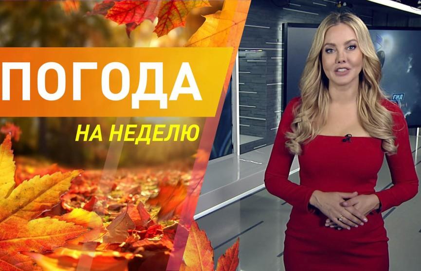 Потеплеет или похолодает? Погода на неделю с 25 по 31 октября. Подробный прогноз