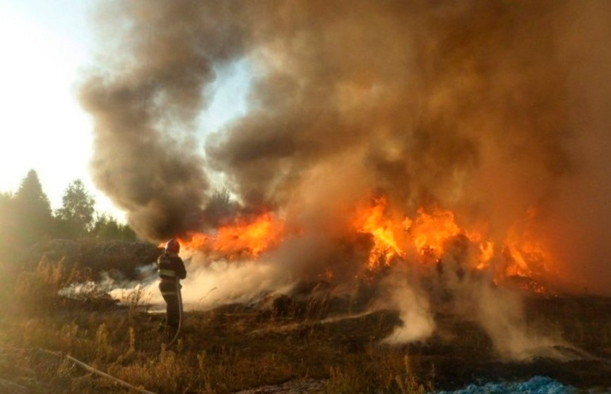 Поджог? В Жлобине горели отходы фабрики по производству меха (ВИДЕО)