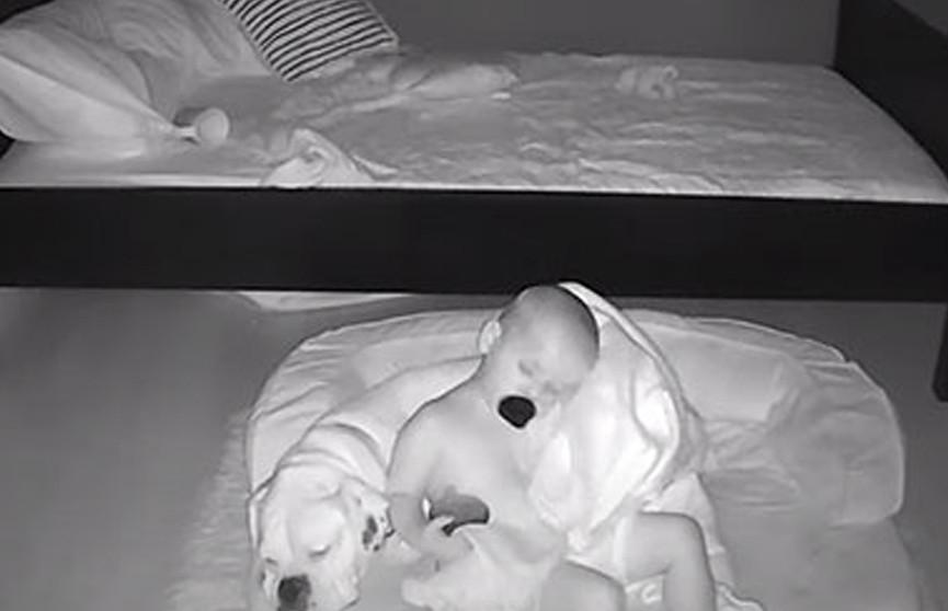 Родители установили видеоняню, полученные кадры с малышом сильно их удивили (ВИДЕО)