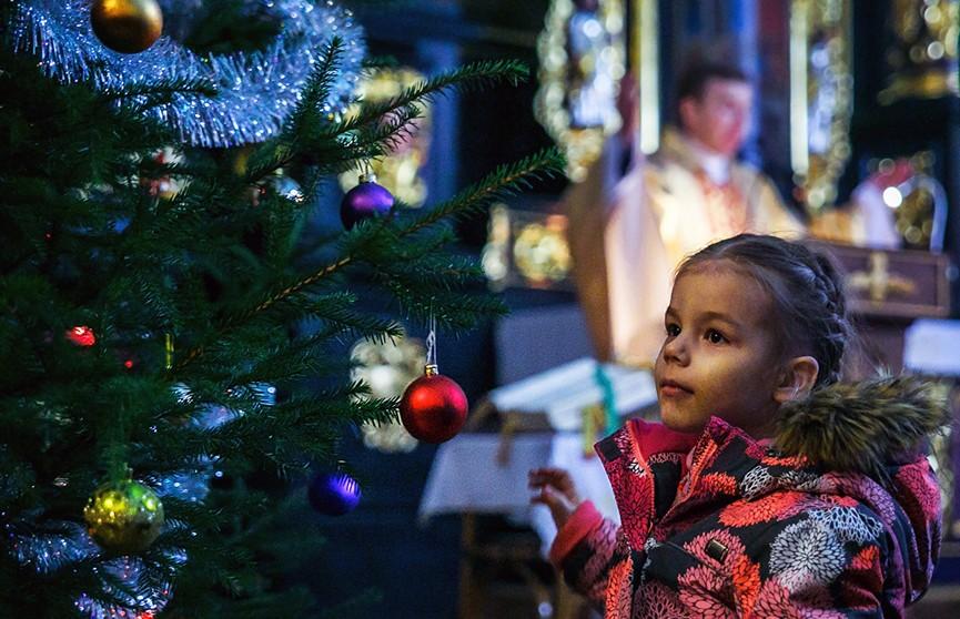 Александр Лукашенко поздравил католиков Беларуси с Рождеством
