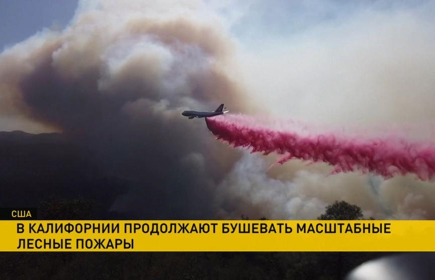 Масштабная эвакуация проходит в США из-за лесных пожаров