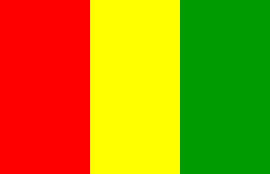 В Гвинее мятежники объявили о роспуске правительства и закрытии государственных границ