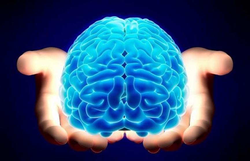 Учёные обнаружили способ победить болезнь Альцгеймера