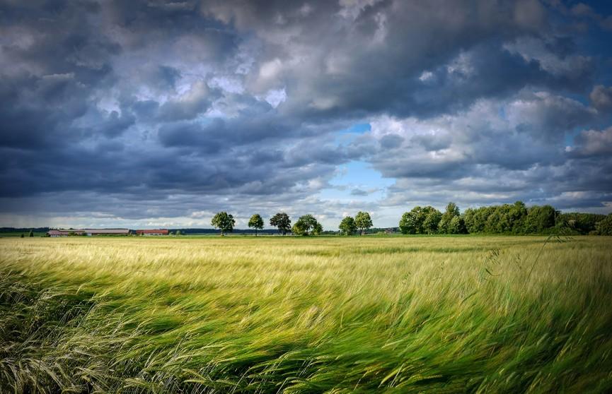 Оранжевый уровень опасности объявлен в Беларуси на 17 и 18 сентября
