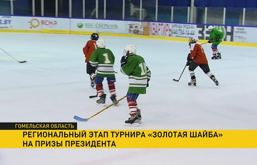 Более 500 юных хоккеистов вступили в борьбу за участие в республиканском этапе турнира «Золотая шайба» на призы Президента Беларуси