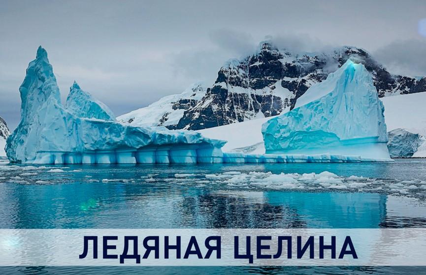Антарктида: как белорусские ученые исследуют самый холодный континент