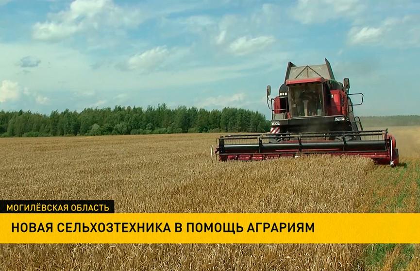 Более полусотни новых комбайнов получила Могилевская область. Каких успехов с новой техникой добились аграрии