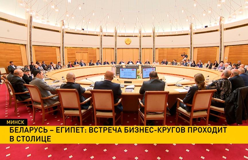 Беларусь – Египет: встреча бизнес-кругов проходит в Минске