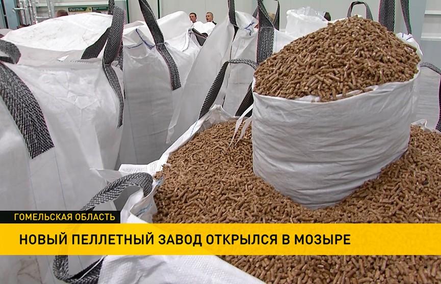 Самый крупный в Беларуси пеллетный завод начал работу в Мозыре