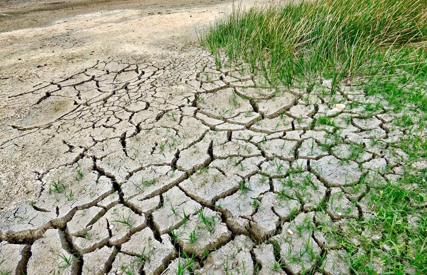 Ветер до 20 м/с и град: на 15 июля в Беларуси объявлен оранжевый уровень опасности из-за жары