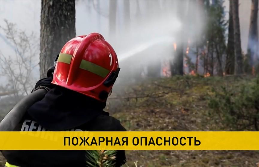 Будьте осторожны! В Беларуси начался пожароопасный сезон