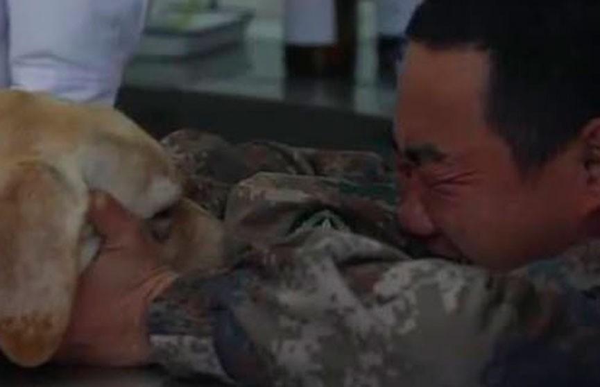 Видео, от которого наворачиваются слезы: солдат расплакался, прощаясь со служебной собакой