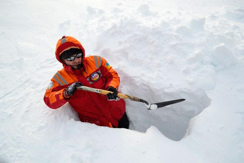 Исследование: головной мозг полярников уменьшился после 14 месяцев в Антарктиде