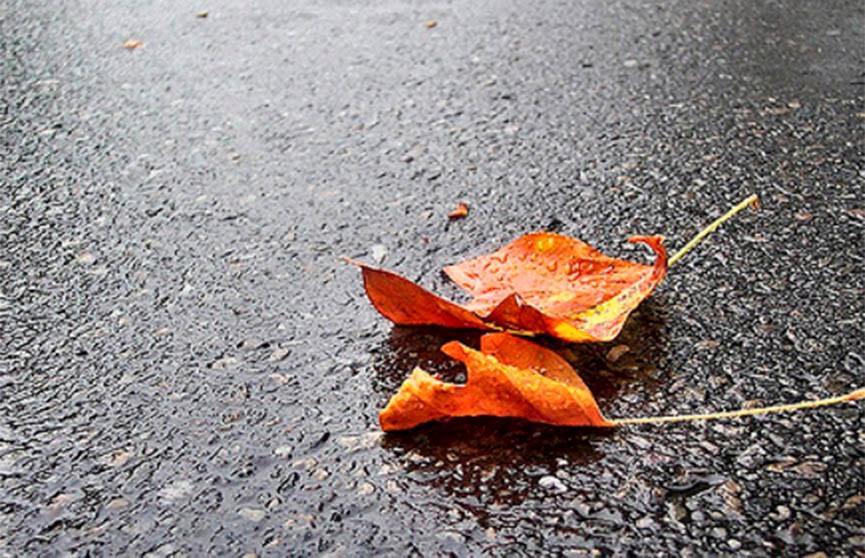 Дожди и грозы обещают синоптики в Беларуси 3 сентября