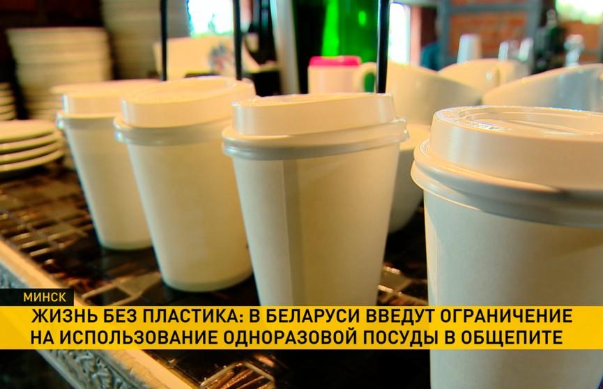 В Беларуси могут ввести запрет на одноразовую пластиковую посуду