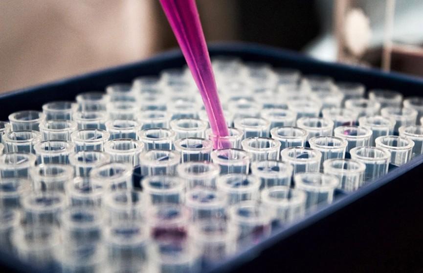 10 тысяч тестов на коронавирус передаст Беларуси Россия