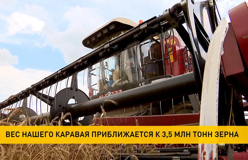 Уборочная-2021: республиканский каравай приближается к 3,5 млн тонн