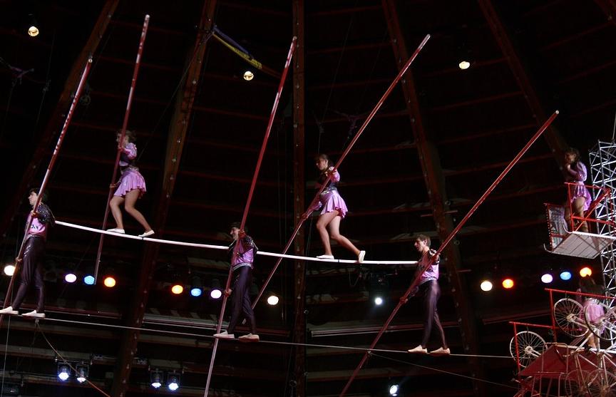 В России артистка цирка упала с высоты во время представления