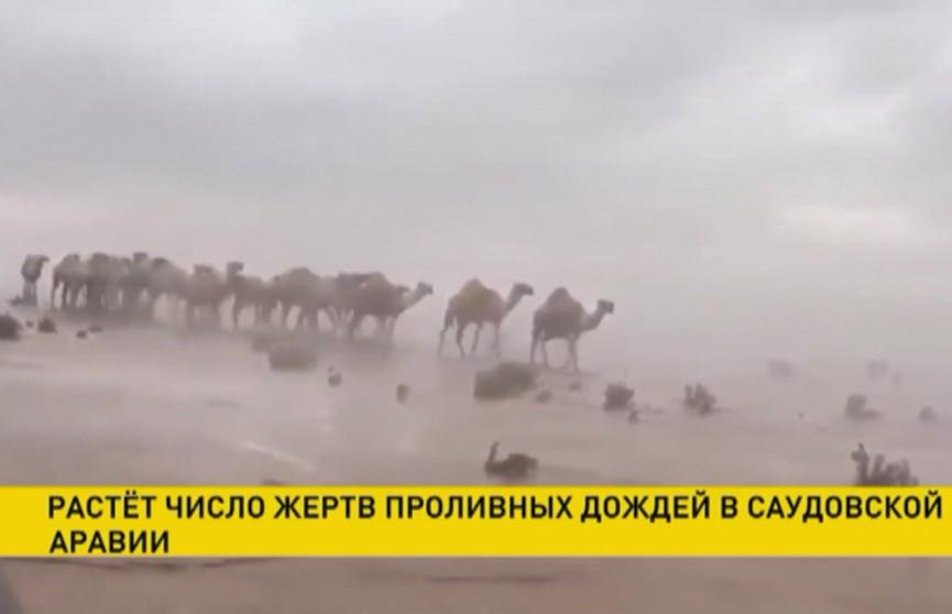 Наводнение в Саудовской Аравии: 35 человек погибли, затопило даже пустыню