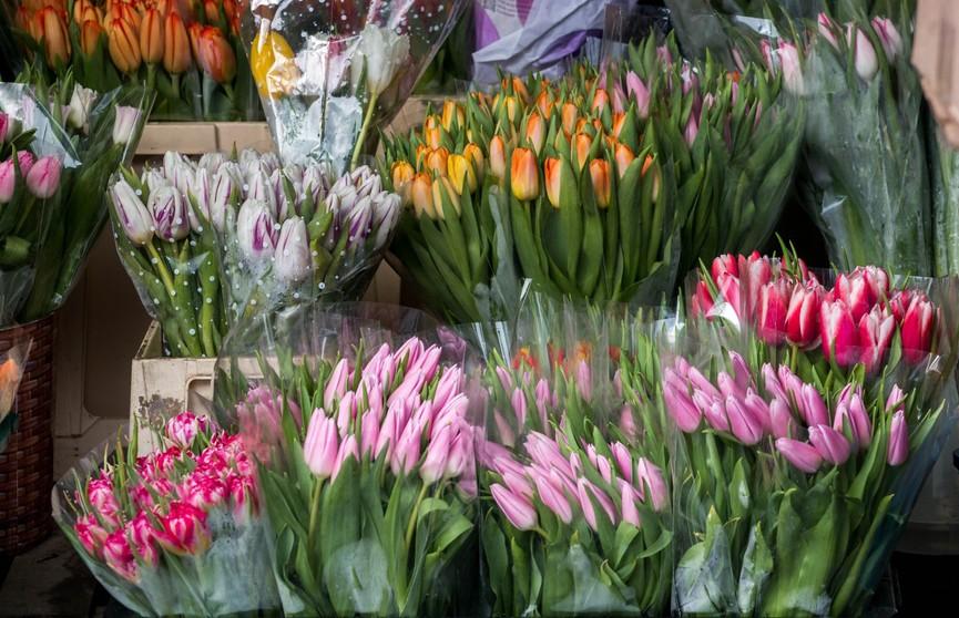 Более Br900 тысяч сэкономила столичная цветочная фирма на налогах