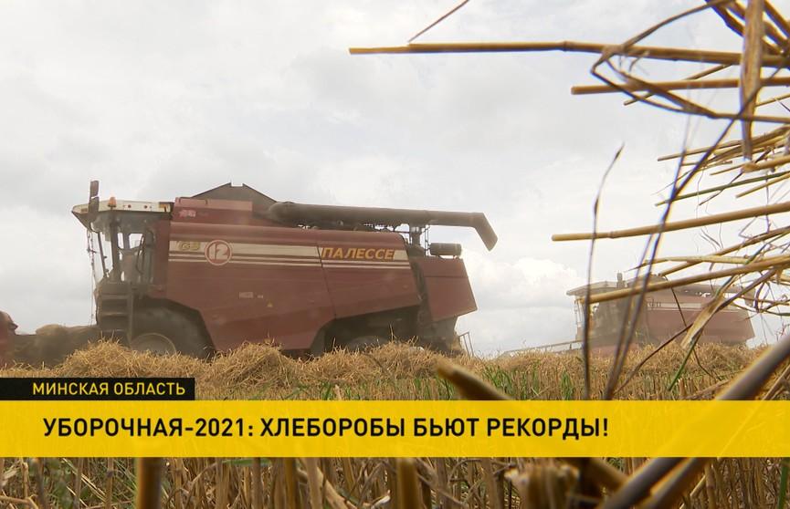 Хлеборобы бьют рекорды: как трудятся на полях в передовых хозяйствах Беларуси